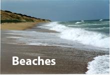State Beaches