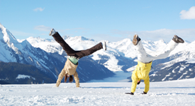 Cartwheels In the Snow
