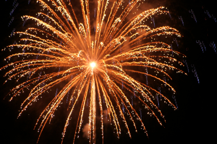 Keeping your dog safe when the fireworks start | Cesar's Way
