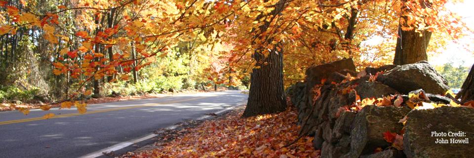 A beautiful fall day at Goddard Park